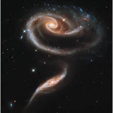 Nasa Honors Hubble Telescope's 21st Anniversary With Stunning 'rose' Made Of Galaxies (picture