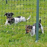 Gartenzäune Für Hunde