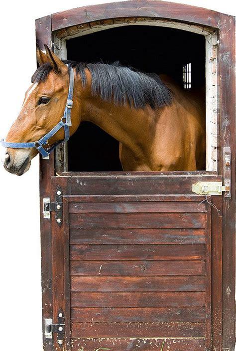 Kinderzimmer Wandgestaltung Pferde by Wandsticker Tiere Pferd Stall Box T 252 R Kinderzimmer In 2019