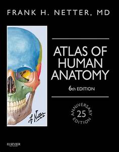What is Anatomy & Physiology? - Tutoring Videos for ...