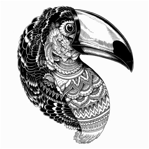 simply creative animal illustrations  iain macarthur