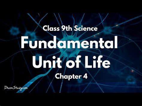 fundamental unit  life cbse class  ix science