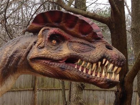 dinosaur dilophosaurus information  kids