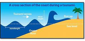 Tsunami facts: check out the mighty wave! | National ...