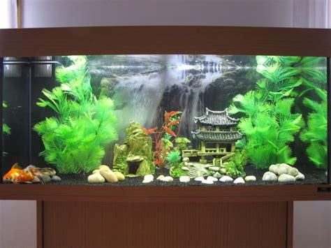 Décoration Aquarium Maison