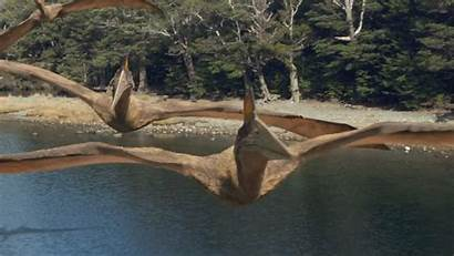 Quetzalcoatlus Wikia Walking Dinosaurs Wwd Pterosauria Flying