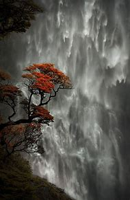 New Zealand Devil's Punchbowl Falls