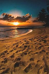 Breathtaking Beach Sunset