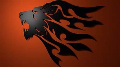 Lion Tribal Wallpapers Desktop Fire Wolf Gear