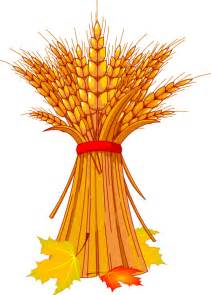Wheat Harvest Clip Art
