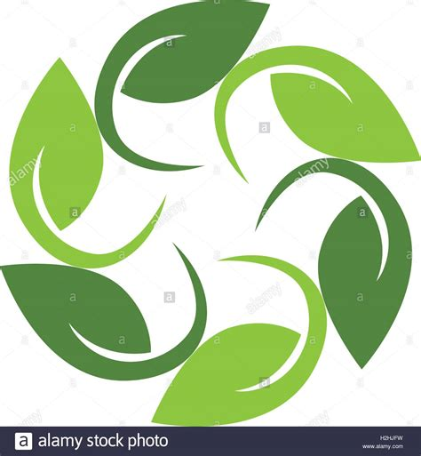 green eco letters logo leaves stock vector 428112841 tree leaf vector logo design eco friendly concept stock
