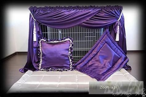 cat show drapes 1000 images about cat show curtains and more on
