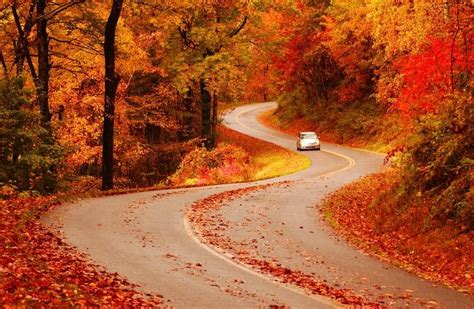 fall colors in virginia most breathtaking usa national parks to visit for fall colors