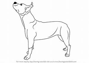 Learn How to Draw a Pit bull Dog (Dogs) Step by Step ...