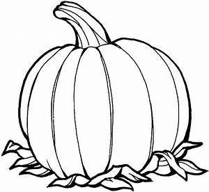Best Pumpkin Outline Printable  22937