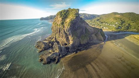 Lion Rock Piha Beach New Zealand Dronestagram