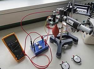 Energie Kondensator Berechnen : ladungen felder oberstufe leifi physik ~ Themetempest.com Abrechnung