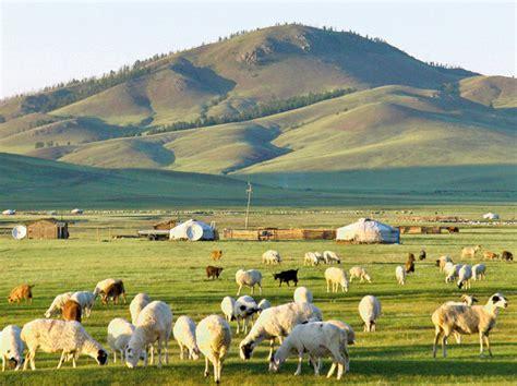 w stepie - Mongolia - zdjęcia - Kolumber.pl