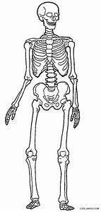 Human Skeleton Coloring Page – craftbrewswag.info