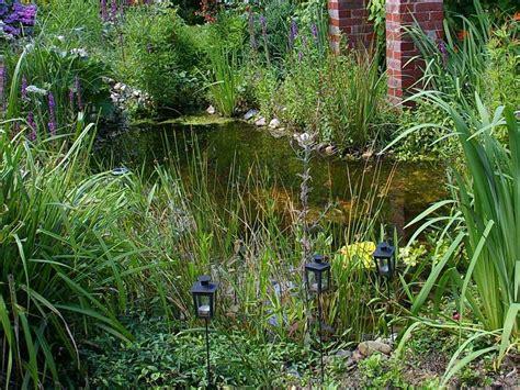 cuisine brico aménagement jardin installer un étang de jardin