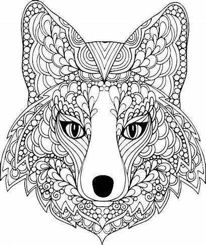Coloring Pages Teens Animal Cool Printable Sheets