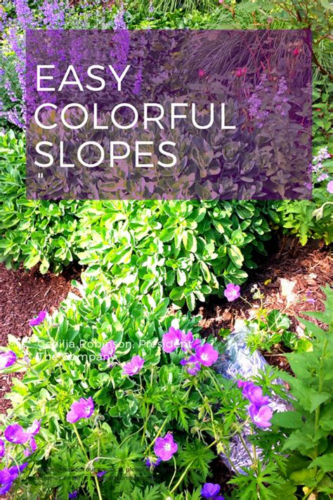 landscaping steep slopes hillside landscapes