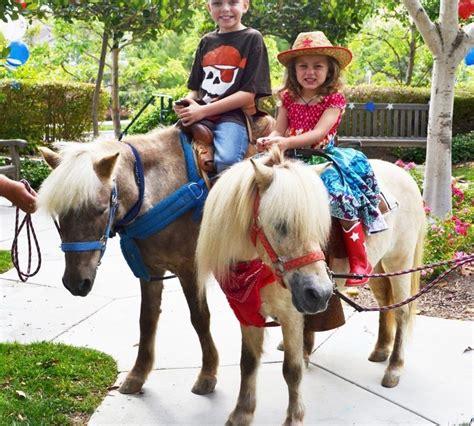 pony rides near