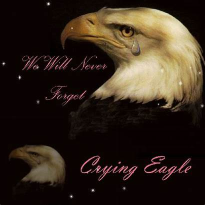 Eagle Tears Crying America God Bless Eagles