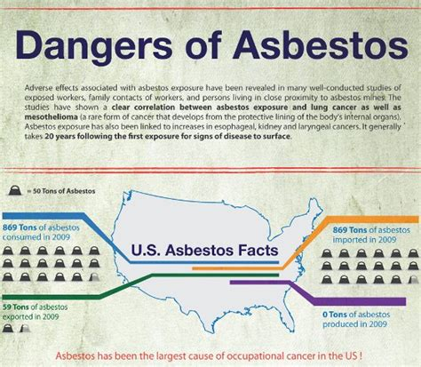 effects of asbestos top 10 asbestos infographics