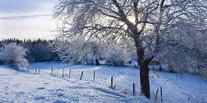 10 Winter Wonderlands To Energize Your Spirit (PHOTOS ...