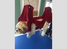 Best 25+ Dog hammock ideas on Pinterest Hammock bed
