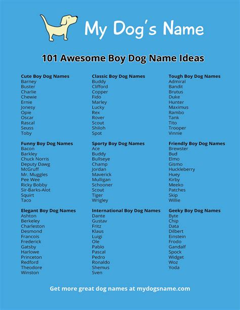 names for boy dogs 101 boy dog name ideas my dog s name