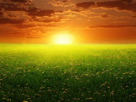 Peaceful Spring Sunset 2560x1600 Wide Wallpapers ...