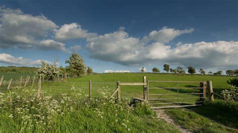 england countryside rural summer field   dubassy