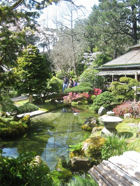 japanese tea garden san francisco photo 962050 fanpop