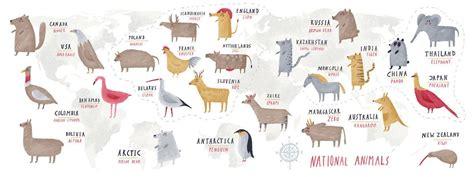 national animals    world  olga oilikki