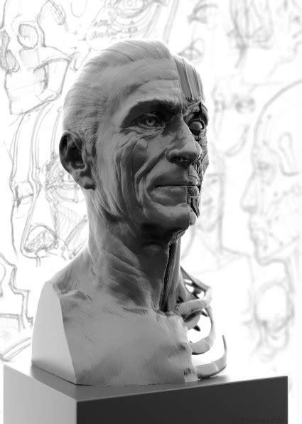 portrait  facial anatomy study scott eaton
