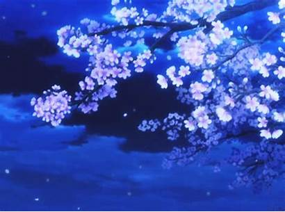 Blossom Cherry Blossoms Anime Ice Crystal Animated