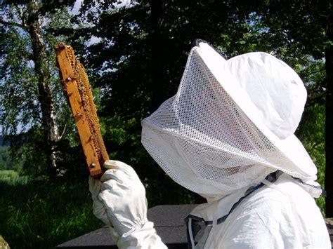 apiculteur wikip 233 dia