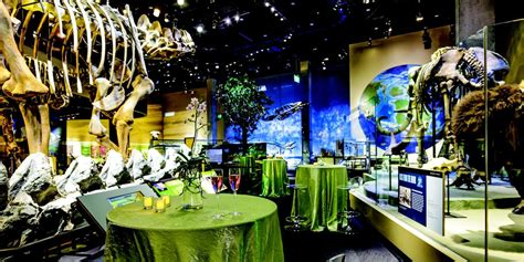 perot museum  nature  science weddings