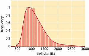 U00bb How Big Is A Human Cell