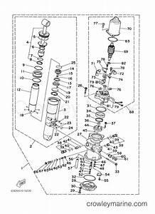 Power Trim Tilt Assembly