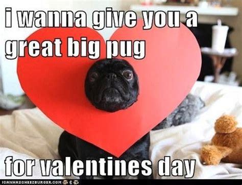 Funny Valentines Day Meme - valentine s day memes popsugar tech