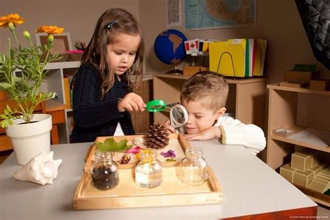 The Major Pros and Cons of Montessori Education | All ...