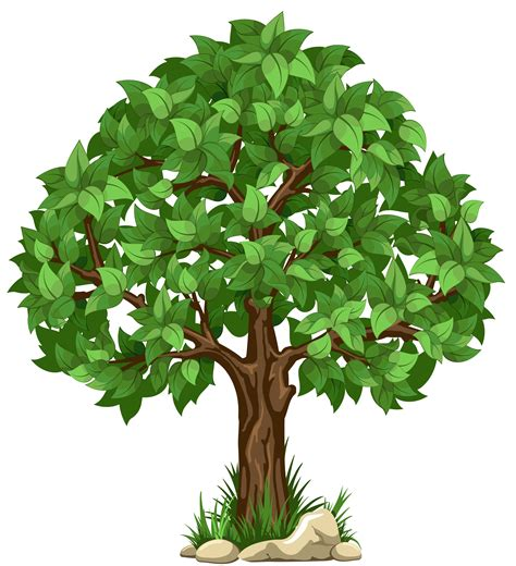 tree clipart tree clipart png 101 clip