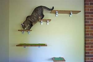Jouets Pour Chats D Appartement : 7 jouets pour un chat d appartement qui s ennuie ~ Melissatoandfro.com Idées de Décoration