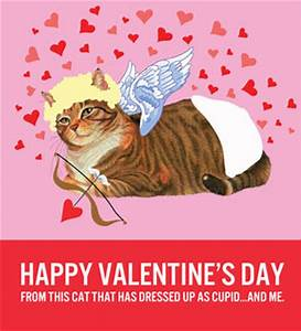 Catsparella: 12 Cat-Themed Valentine's Day Cards To Help ...