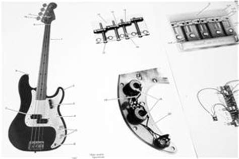 fender precision bass special 1981 wiring diagram