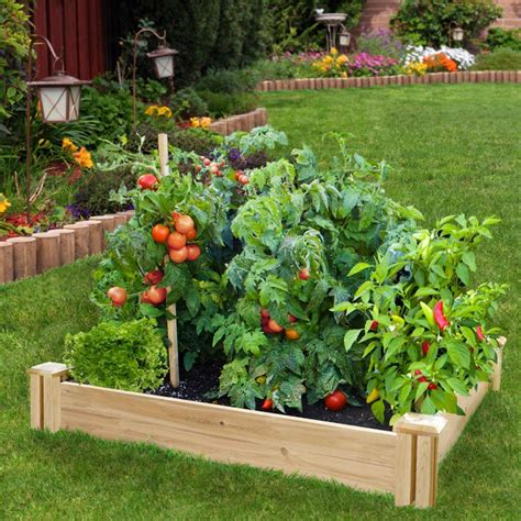 tips  trends   perfect gardening space