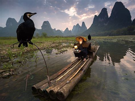 National Geographic's Top 20 Photos Of 2015  Bored Panda